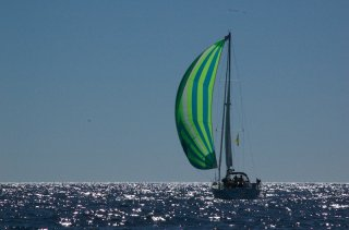 Another Baja Ha-ha racer flying a Spinnaker